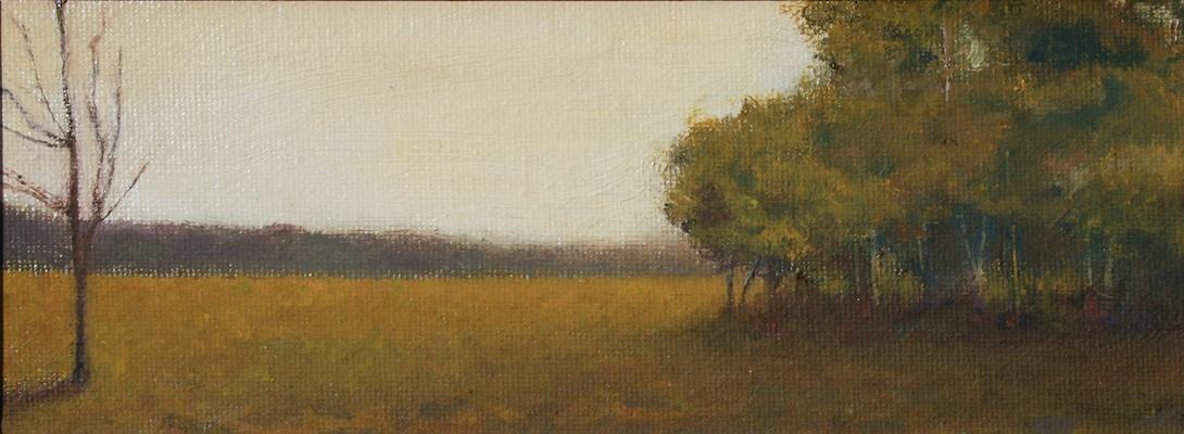 Field in Gold Light