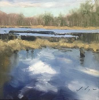 Spring, Hollis Marsh